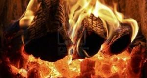 Combustion de bois bûche - étude sur les consommations de bois bûche en Ardèche en 2013