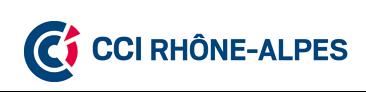 le Logo des CCI de Rhône-alpes