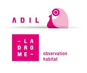 ADIL_OBS__2011
