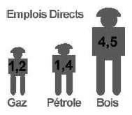 Poids des emplois directs selon la source d'énergie